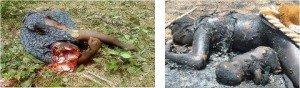 Génocide du peuple ivoirien: Leur silence est un message! dans La Révolution Permanente 580761_345563615519793_44335919_n-300x88